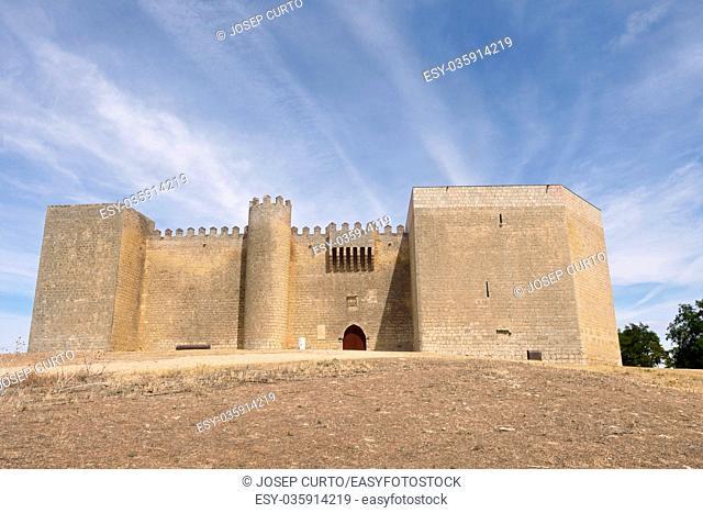 Castle of Montealegre de Campos, Tierra de Campos region, Valladolid province, Castilla y Leon, Spain