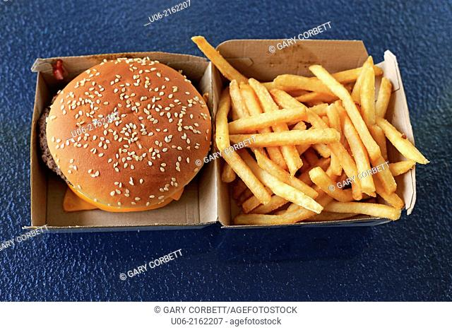 A McDonalds quarter 1/4 pounder with cheese hamburger in it's box with french fries piled into the other side of the box