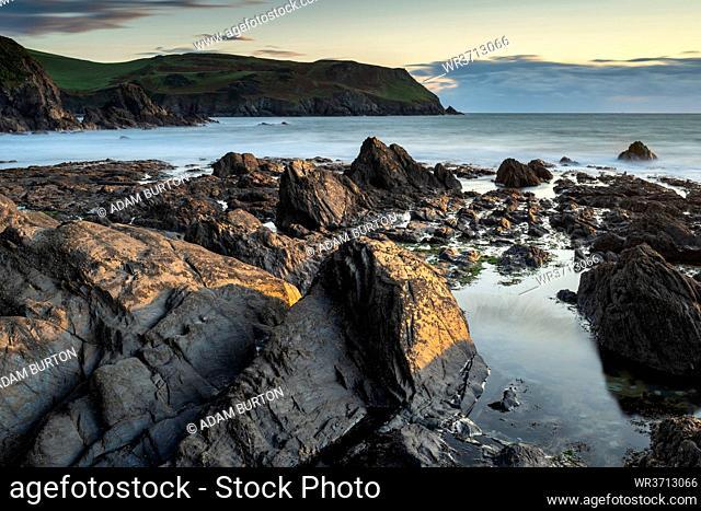 Evening sunlight on the rocky shores of Hope Cove, Devon, England, United Kingdom, Europe