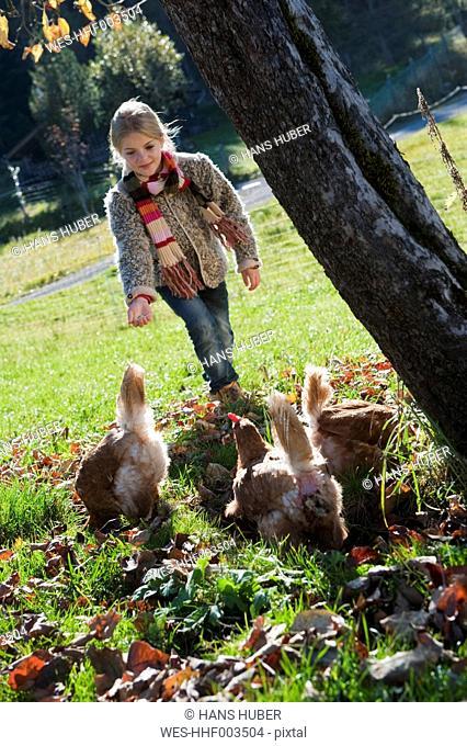 Austria, Salzburg, Flachau, Girl with hensin farm garden
