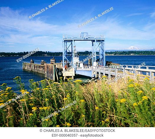 Lummi Island ferry landing. Afternoon of July. Puget Sound, Whatcom County. Washington. USA