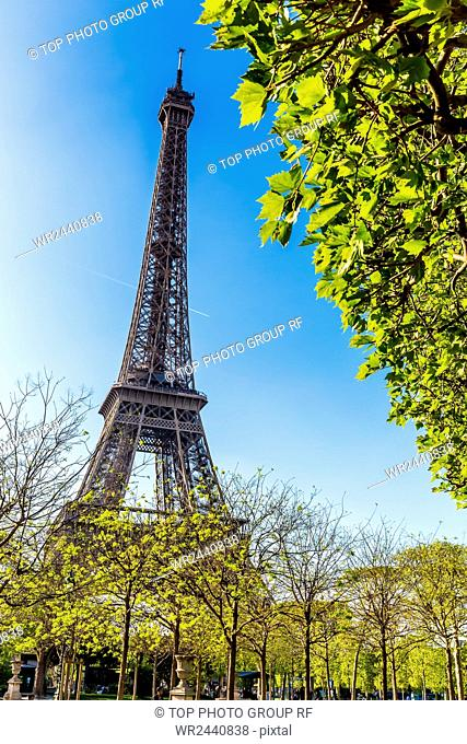 France;Paris;Eiffel Tower