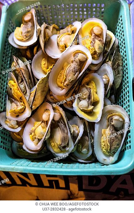 Oysters, Ho Chi Min, Vietnam