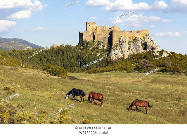 Horses in field in front of Loarre castle, near Loarre, Huesca Province, Aragon, Spain. The Romanesque castle is amongst Spainâ