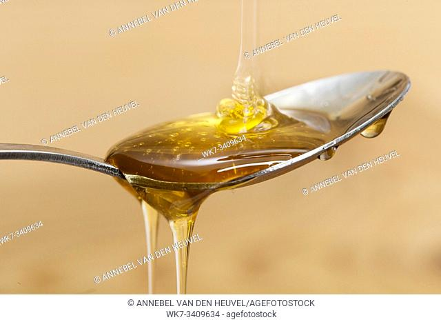 Shiny golden honey dripping off of a silver spoon with a wooden brown background sweet