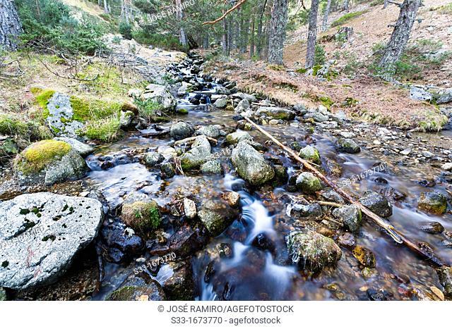 The Toril stream in the Sierra de Guadarrama  Madrid  Spain