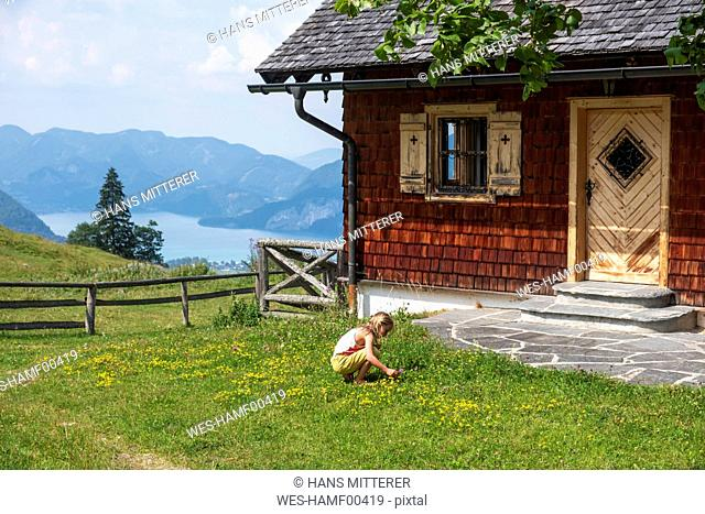 Girl picking flowers in garden of a rural house