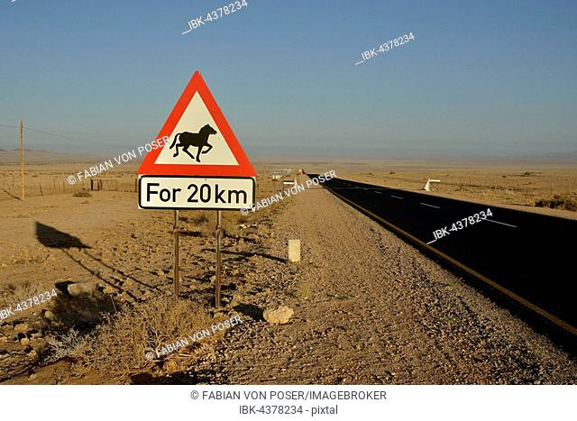 Road through the desert with a warning sign Attention horses, near Aus, Karas Region, Namib, Namibia