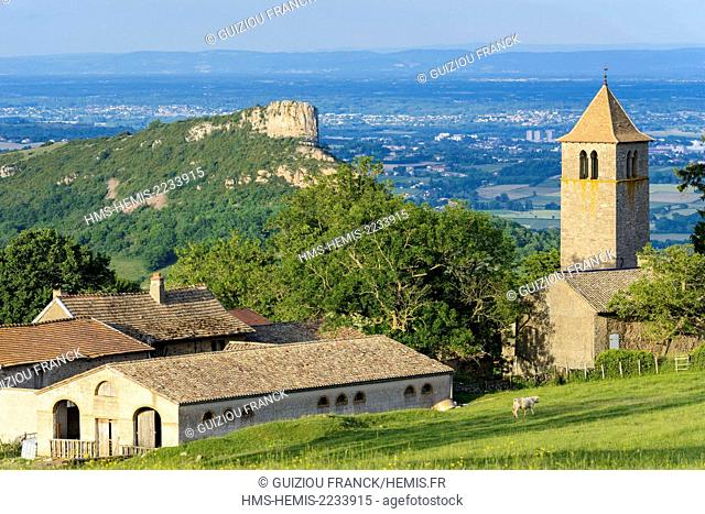 France, Saone et Loire, Grange du Bois, hamlet of Solutre Pouilly at an altitude of 500m, the Priory and Solutre Rock in the background