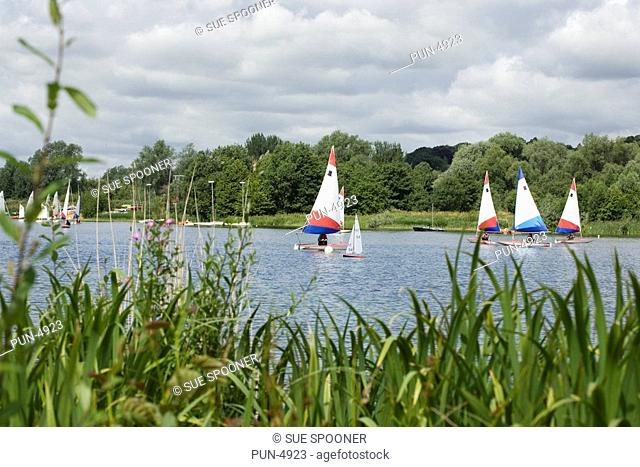 Several sailing boats at Whitlingham Country Park