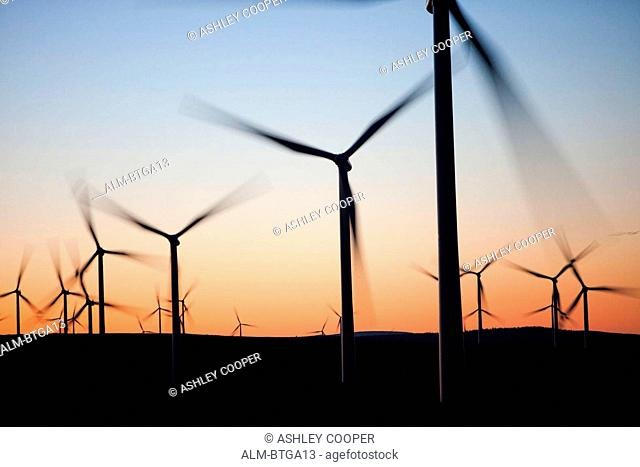 Dawn over Whitlee wind farm south of Glasgow, Scotland, UK, is Europes largest onshore wind farm with 140 turbines. Dawn over Whitlee wind farm on Eaglesham...