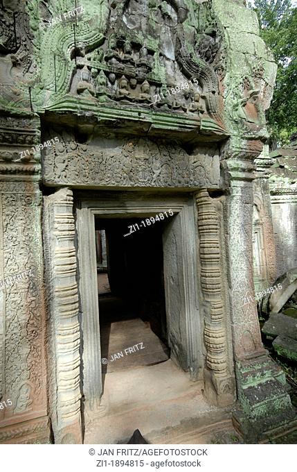 ruins at Angkor Ta prohm