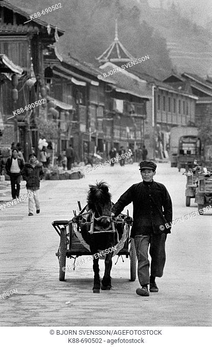 Traditional Dong village,  Zhaoxing, Guizhou, China
