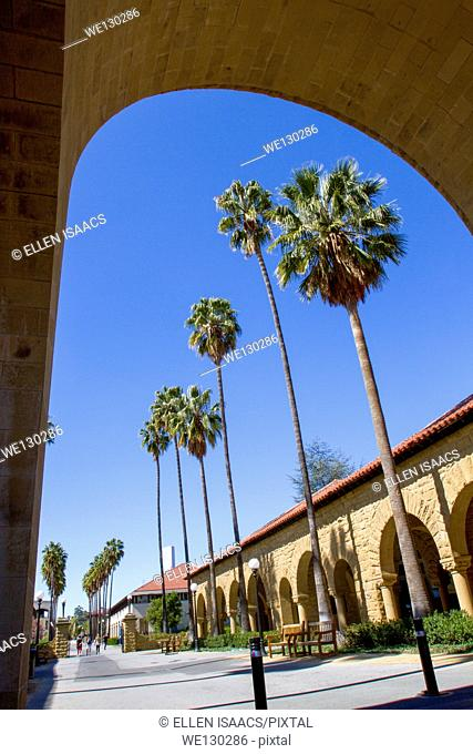 Palm trees through archway on Stanford University campus