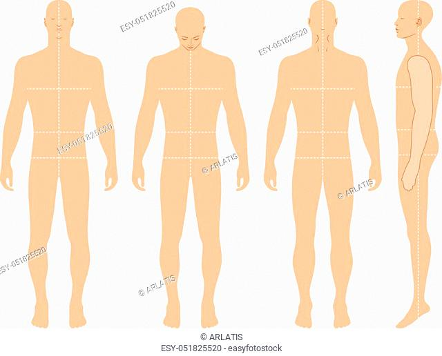 Fashion body full length bald template figure silhouette (front, back and side views), vector illustration isolated on white background