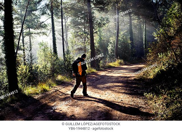 excursionist in the Forest near Barcelona, Spain