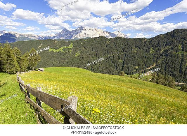 Longiarù, San Martino in Badia, Badia Valley, Dolomites, Bolzano province, South Tyrol, Italy. Meadows of Longiarù with Sasso della Croce in the background