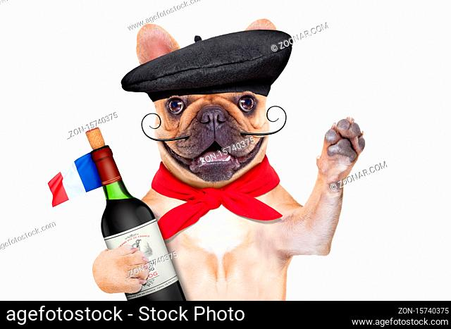 french bulldog with red wine and beret hat, isolated on white background, waving paw or high five