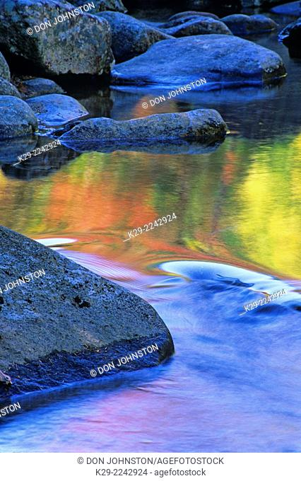 Autumn colour reflected in pool of water along the Swift River, near Conway, NH, USA