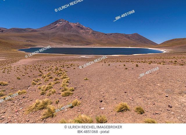 Lagoon, Laguna Miniques with Volcano Miniques, Altiplano, Región de Antofagasta, Chile