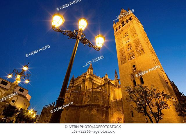 Giralda tower and cathedral at night, Sevillla. Andalucia, Spain