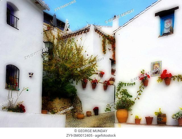 """Floral Christmas planting in El Acebuchal – """"the Lost Village"""" and """"the Ghost Village – el Pueblo Fantasma,"""""""