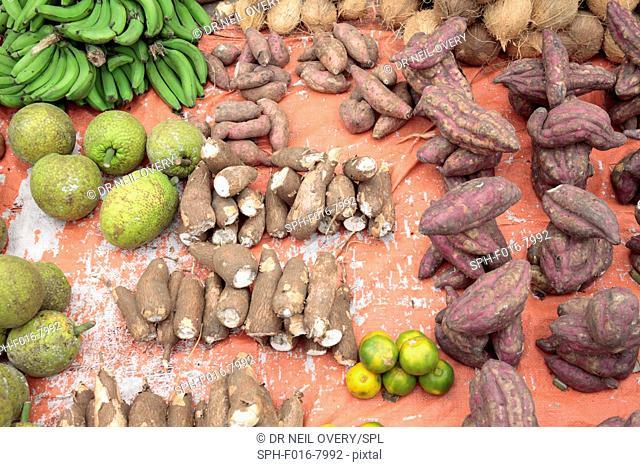 Taro (Colocasia esculenta), breadfruit (Artocarpus altilis), and sweet potato for sale in market, Stone Town, Zanzibar, Tanzania