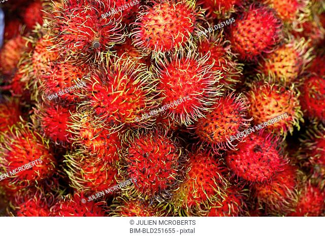 Pile of red spiny fruit