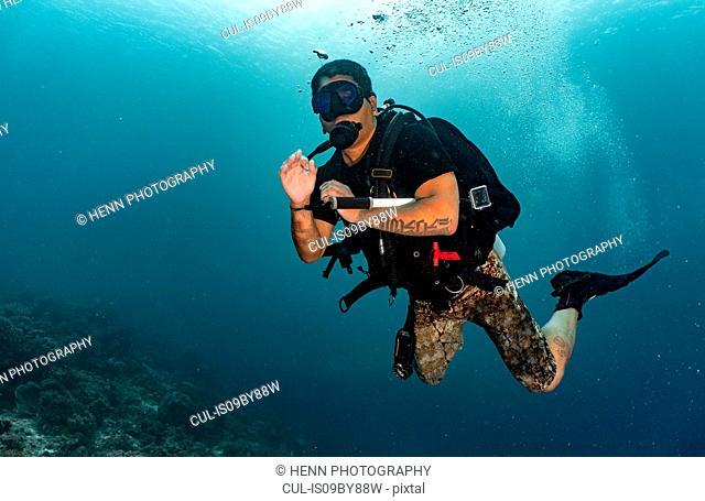 Diver exploring tropical waters, Raja Ampat, Sorong, Nusa Tenggara Barat, Indonesia