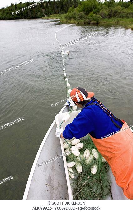 Alaskan native man gillnet fishing for Bristol Bay Sockeye salmon on the Newhalen River near Iliamna, Southwest Alaska, Summer