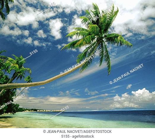 Bora-Bora. French Polynesia
