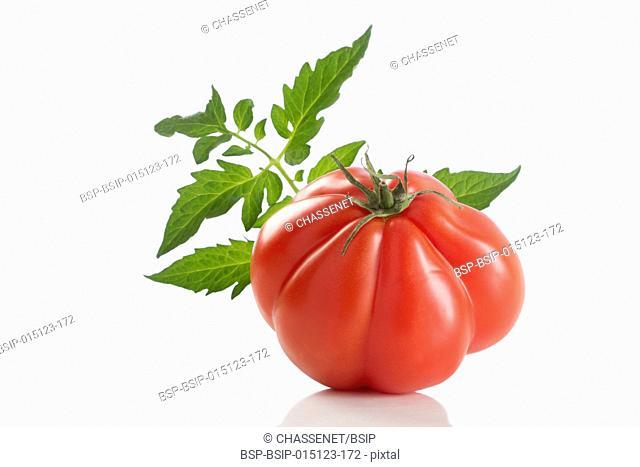 Heirloom Tomato on white background