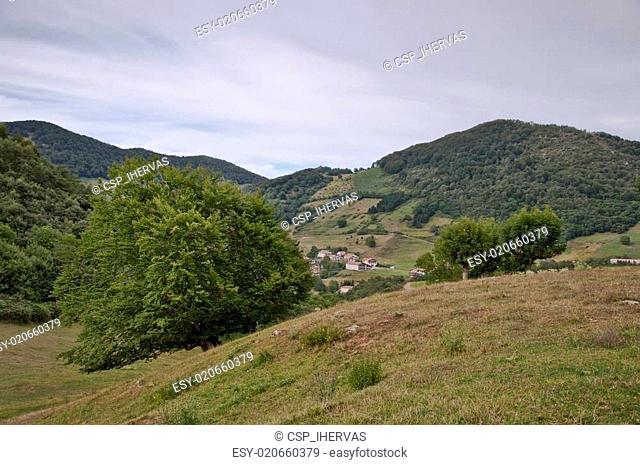 Navarra countryside