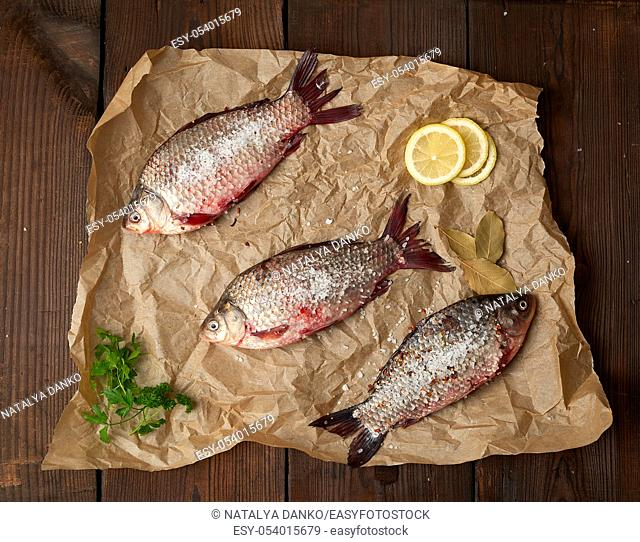 whole fresh crucian fish with scales on a crumpled brown piece of paper, top view