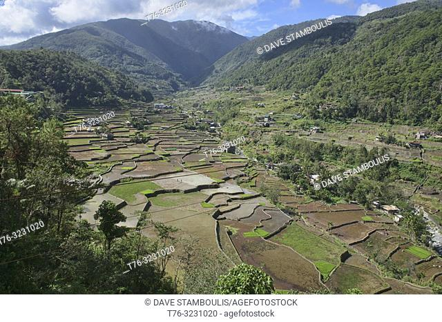 The beautiful UNESCO rice terraces in Hapao, Banaue, Mountain Province, Philippines