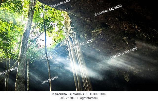Caverna Xaman, San Juan de Dios, Cobá. Quintana Roo, México