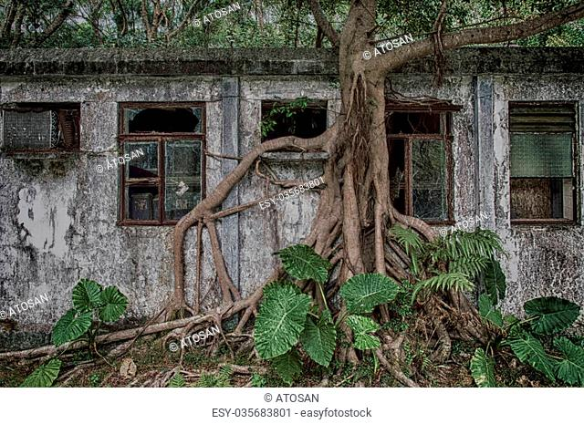 An old weathered abandon residence in the forests on Lantau island, Hong Kong