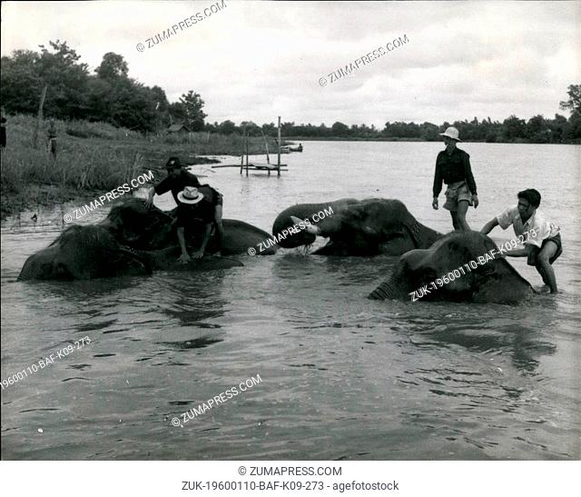 1958 - 'Jumbo' is still superior to the tractor in the Siamese teak Forest but the Dog raftsmen have to beware of the Frogman Thief