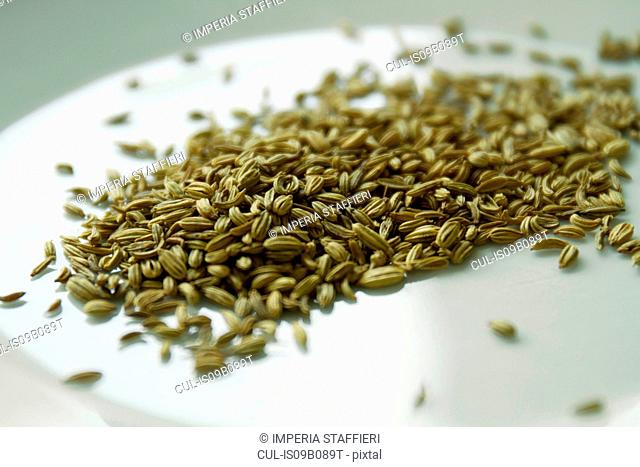 Close up of fennel seeds on plate