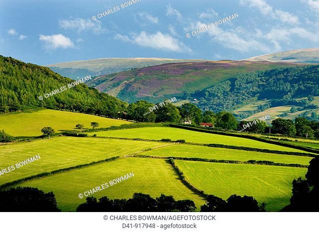 europe, UK, Wales, Powys, landscape, 2009