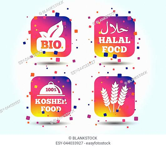 Natural Bio food icons. Halal and 100% Kosher signs. Gluten free agricultural symbol. Colour gradient square buttons. Flat design concept. Vector