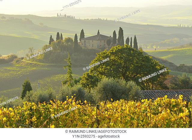 Tuscany Countryside with Farmhouse in Autumn, San Quirico d'Orcia, Val d'Orcia, Provinz Siena, Tuscany, Italy