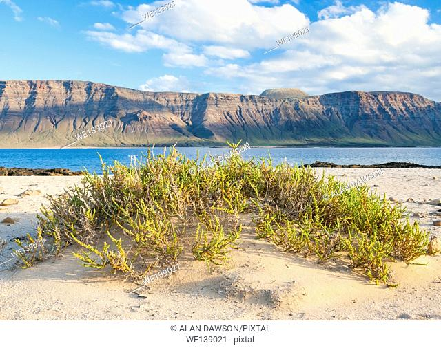 View of Lanzarote in distance from beach on La Graciosa Island near Lanzarote, Canary Islands, Spain, Europe