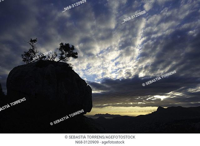 Serra de Tramuntana at dawn, Escorca, Majorca, Balearic Islands, Spain