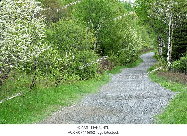 A section of the Trans-Canada Trail, Naughton, Ontario, Canada