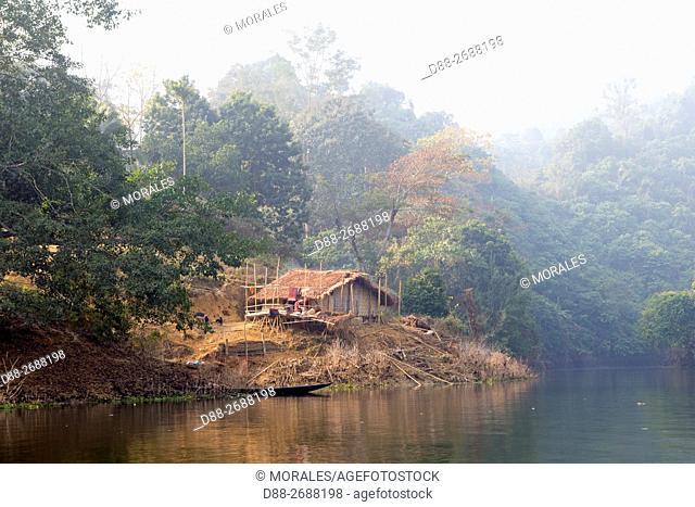 South east Asia, India,Tripura state,Bambur lake,forest along the lake,deforestation