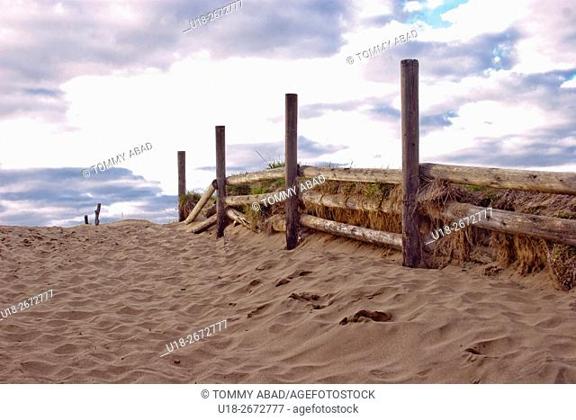 Log fence on the beach. Cariló, Pinamar, Province of Buenos Aires, Argentina
