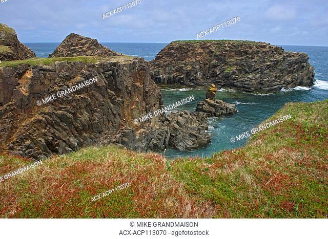 Rocky cliffs along the Atlantic Ocean, Elliston, Newfoundland & Labrador, Canada