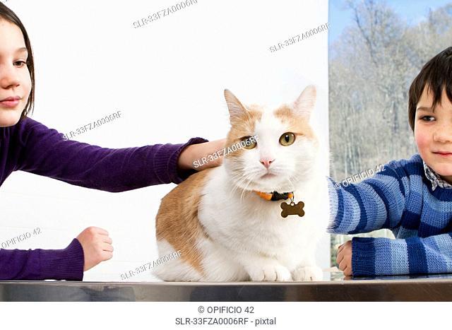 Children petting their cat