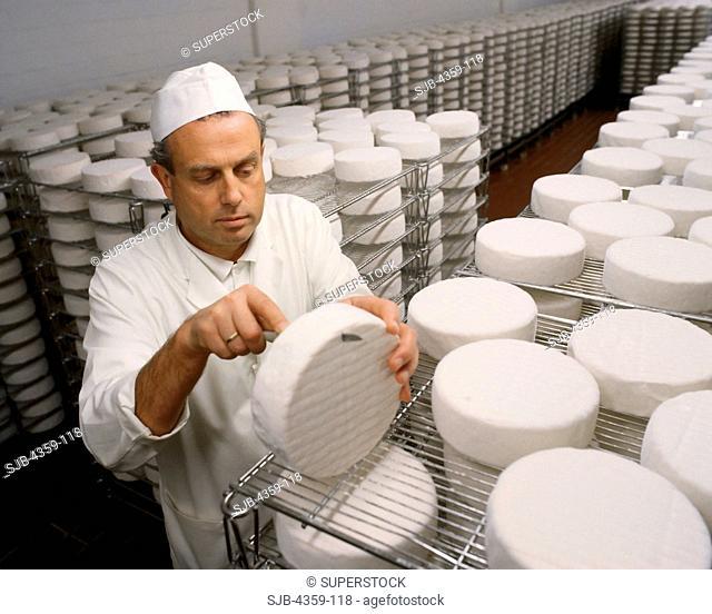 Sampling Cheese